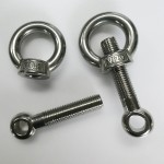 Swing Bolt M20 x 100mm x 16mm in 304 Stainless
