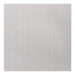 1.1mm Perforated 316 x 2mm Pitch - 0.75mm thick